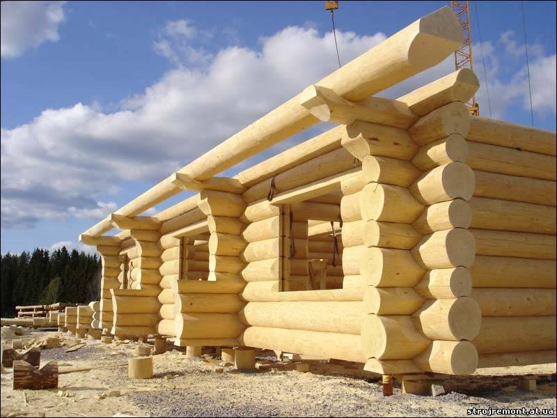 Строим дом из дерева видео